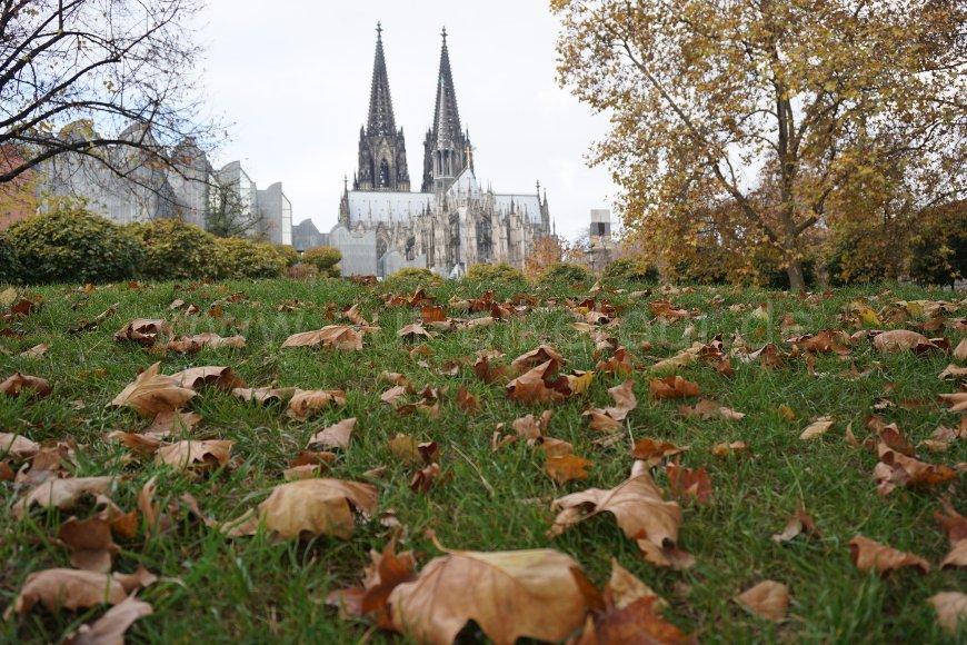 Kölner Dom im Herbst