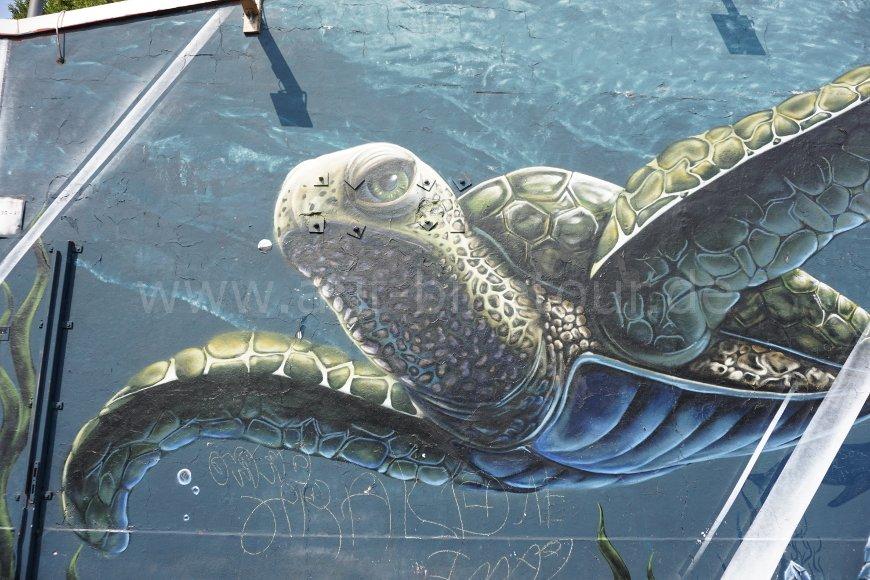 Mural Schildkröte Heliosstraße