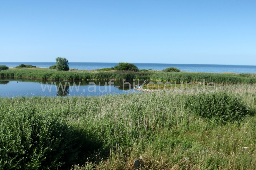 Naturidyll an der Ostsee