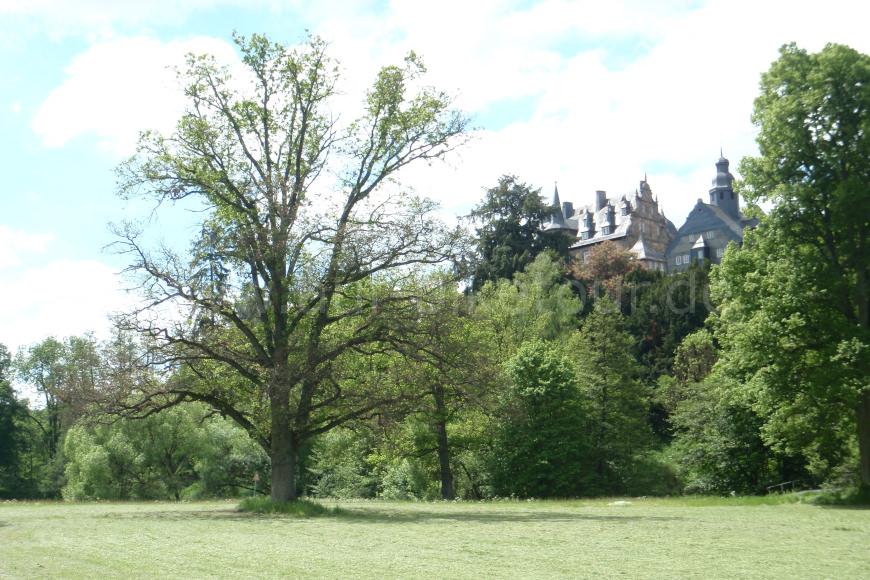 Schlosspark am Schloss Eisenbach