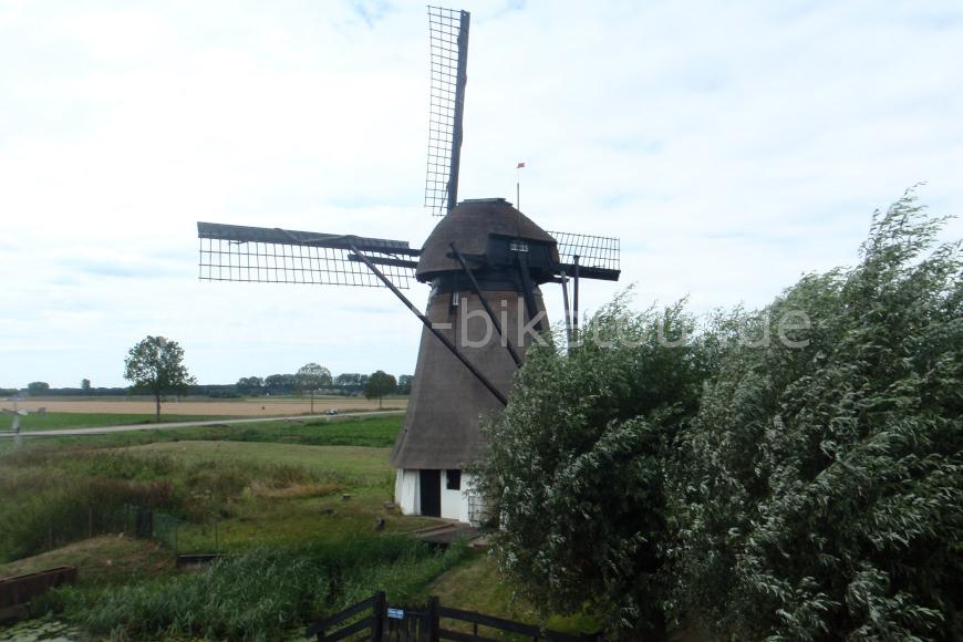 Windmühle am Rheinradweg