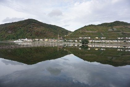 Panorama Lorch am Rhein